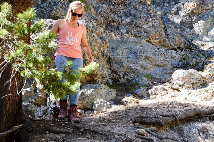 Wanderung in den Grand Canyon des Yellowstone Nationalparks