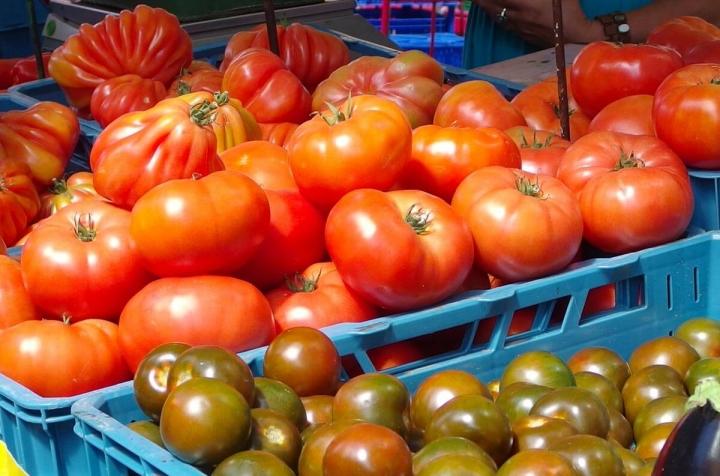 Katalanisches Tomatenbrot Girona Tomaten auf dem Markt Spanien Costa Brava