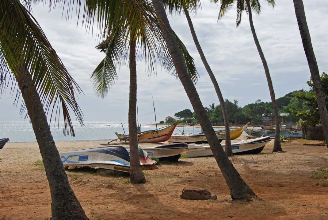 Arugam-Bay-Boats