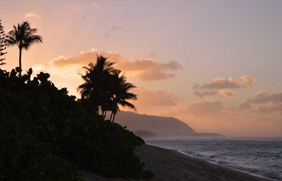 Sonnenuntergang mit Palmen am Strand von Haleiwa, Oahu, Hawaii.