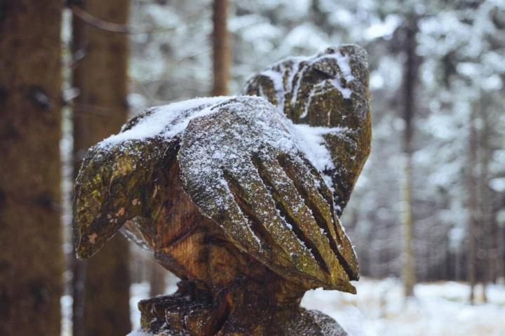Tipps für Oberhof Thüringen Vogel Holzskulptur im Thüringer Wald am Rennsteig