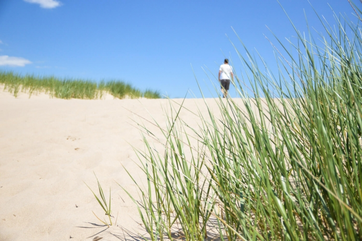 Roadtrip durch Kanada und die USA-Die Route-Warren Dunes State Park
