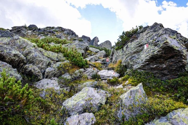 Auf dem Weg zur Neunerspitze in Hall-Wattens ist Klettern angesagt und Schwindelfreiheit