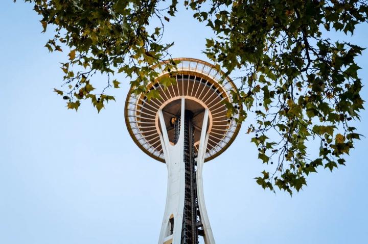 Blick durch gefärbtes Laub an den Bäumen auf die Seattle Space Needle