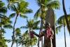 Hawaii Inselhopping Guid Oahu: Die Statue von Duke Kahanamoku am Strand von Waikiki Beach