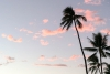 Hawaii Inselhopping Oahu: Sonnenuntergang mit rosa Wolken am Waikiki Beach