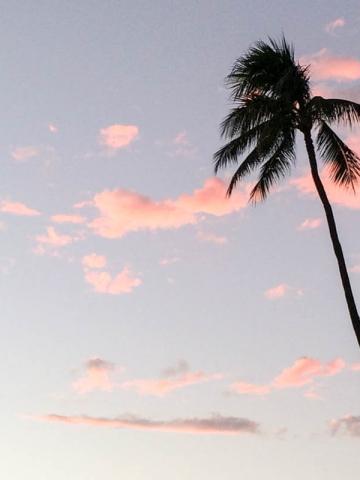 Das kostet der Hawaii-Urlaub