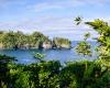 Inselhopping-Guide Hawaii Welche Insel ist die richtige für dich Big Island Hilo Botanical Garden