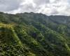 Inselhopping-Guide Hawaii Welche Insel ist die richtige für dich Kauai Napali Coast Hinterland