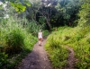 Inselhopping-Guide Hawaii Welche Insel ist die richtige für dich Maui Road to Hana Wandern auf dem Pipiwai Trail