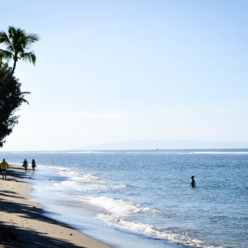 Inselhopping-Guide Hawaii Welche Insel ist die richtige für dich Maui Strand in Lahaina