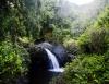 Inselhopping-Guide Hawaii Welche Insel ist die richtige für dich Maui Wasserfall an der Road to Hana