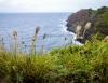Inselhopping-Guide Hawaii Welche Insel ist die richtige für dich Maui Westküste