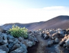 Inselhopping-Guide Hawaii Welche Insel ist die richtige für dich Maui magische Stimmung zum Sonnenaufgang