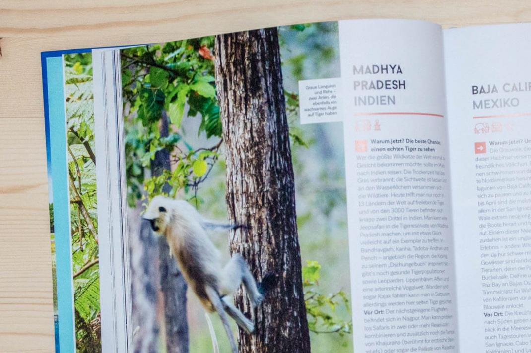 Die schönsten BIldbände 2017 für Weltenbummler und Reisende Wann wohin reisen Lonely Planet Blick ins Buch