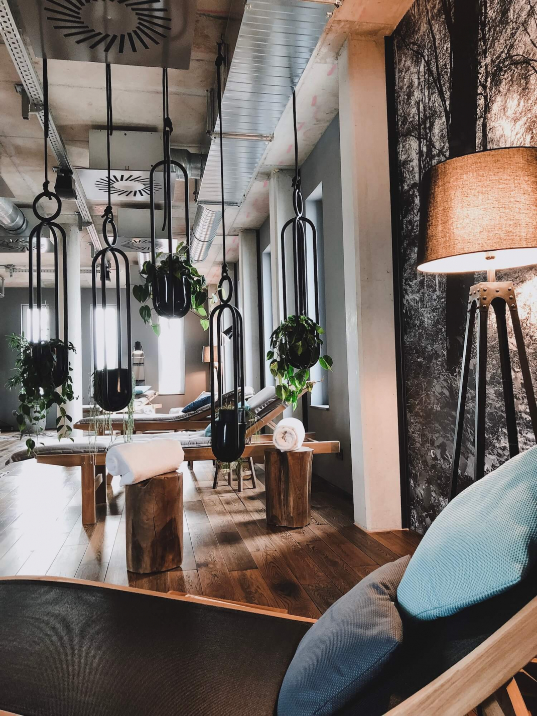 Hotel-Tipp Mainz me and all Hotelempfehlung Pflanzen im Wellnessbereich