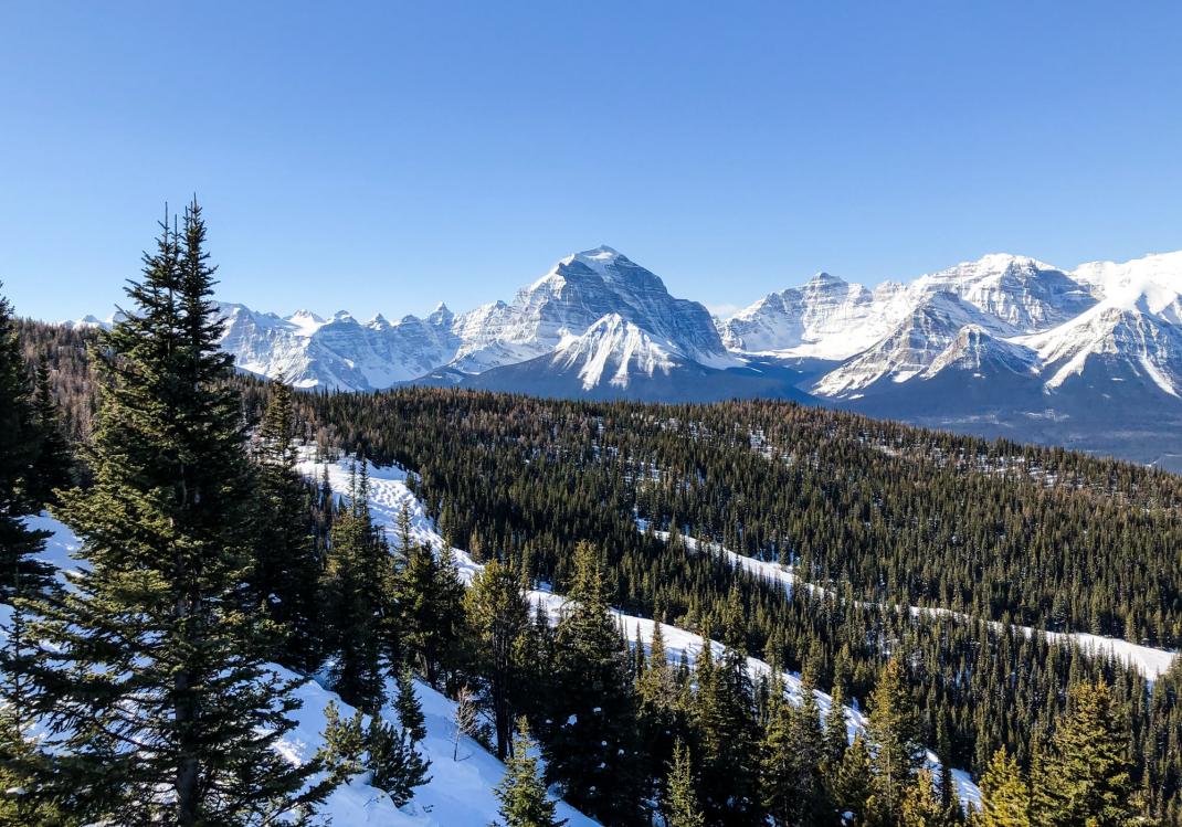 Winterurlaub in Kanada Aussicht aus dem Sesselift